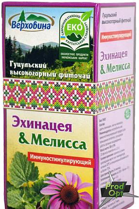 Чай Галка Ехінацея з мелісою 20 пакетів, фото 2