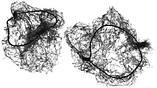 Сеточка крупная для волос на резинке, черная, фото 2