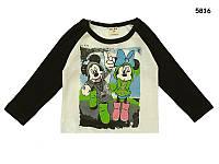 Кофта Mickey&Minnie унисекс. 90, 100, 110, 120 см