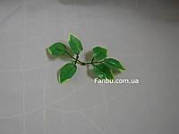 Искус. листья розы осветленные,на 1 розетке 6 листочков-(маленькие).