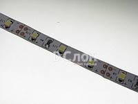 Cветодиодная лента MOTOKO SMD 3528, 60 диодов,в силиконе, белая теплая.