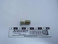 Болт-штуцер М10х1,0х20 (под 1 наконечник), 310122-П2 (аналог 245-1104787)
