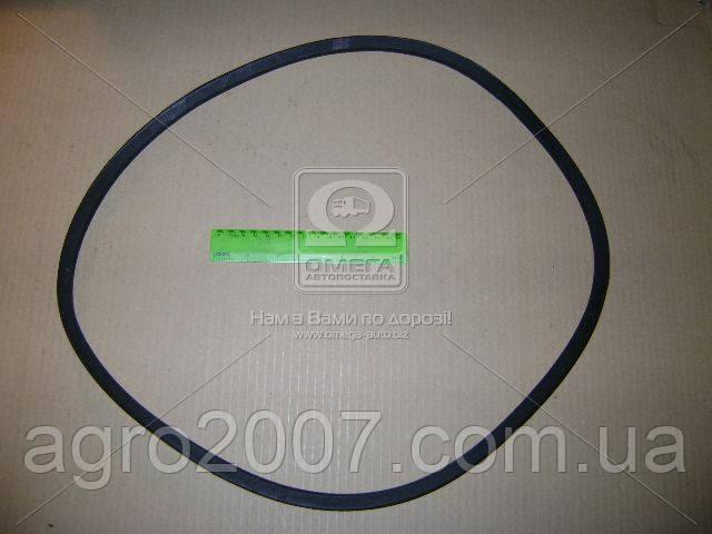 11х10-1250 Ремень вентилятора МТЗ  (Rider) гладкий