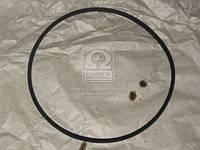 11х10-1250 Ремень вентилятора МТЗ  (ЯРТ) гладкий