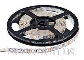 Світлодіодна стрічка Rgb 12V-60led/m premium