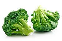 Семена среднего гибрида капусты брокколи универсального применения и стойкостью к заболеваниям сорт Монако F1