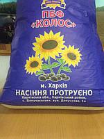 Семена подсолнечника под гранстар СОЛТАН - Стандарт