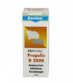 Canina Petvital Propolis N 2000 улучшение работы иммунной системы для грызунов, 10 гр.