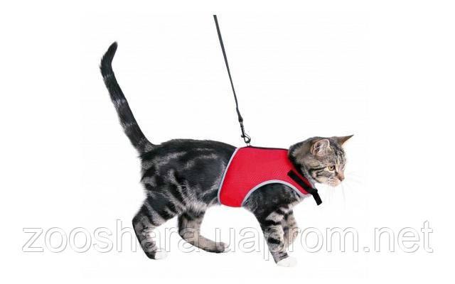 "Trixie ""XCat"" Шлея для котов с поводком , 1,2м"