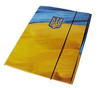 Папка на резинке А4 РР покрытие картон 1мм