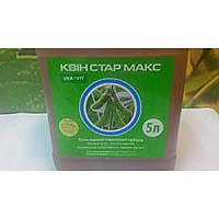 Гербицид КВИН СТАР МАКС Хизалофоп-п-етил, 125 г/л. УКРАВИТ