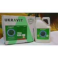 АГЕНТ Прима 911 2,4-Д 2-етилгексиловий ефир, 452 г/л, у кислотному еквиваленте, 300 г/л + флорасулам, 6,25 г/л