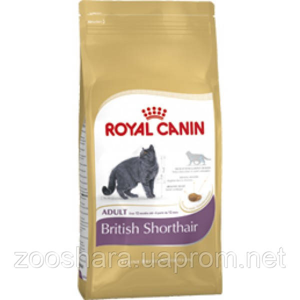 ROYAL CANIN (РОЯЛ КАНИН) BRITISH SHORTHAIR 10КГ (ДЛЯ БРИТАНЦЕВ КОРОТКОШЁРСТНЫХ ОТ 1 ГОДА)