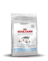 ROYAL CANIN (РОЯЛ КАНИН) Queen 4кг (для беременных и кормящих кошек)
