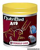 Versele-Laga NutriBird A19 МОЛОКО (for baby-birds), 0.8 кг, молоко для птенцов крупных попугаев