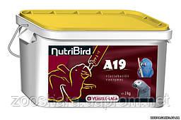 Versele-Laga NutriBird A19 МОЛОКО (for baby-birds), 3 кг, молоко для птенцов крупных попугаев