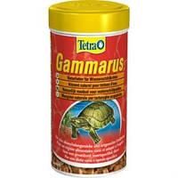 Tetra Fauna GAMMARUS (гаммарус) для черепах (1 л)