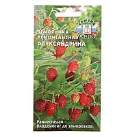 Семена Земляника ремонтантная Александрина 0,04 грамма Седек