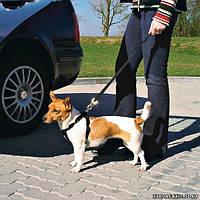 Шлея транспортировочная для собак Trixie Car Harness S (30–60 cm ) (1290)