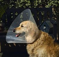 Trixie Воротник ветеринарный послеоперационный 25см, диаметр 44-50см