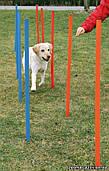 Тренировочные палки для собак (12 шт.), Trixie Dog Activity Agility Slalom (3206)