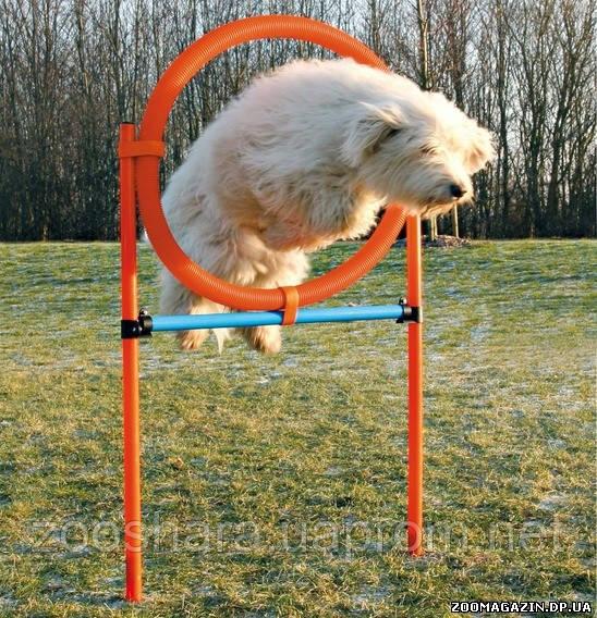 Сборный барьер для собак, Trixie Dog Activity Agility Ring (3208)
