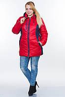 Зимняя куртка со вставками L26   48–64р. в расцветках