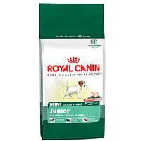 Royal Canin (Роял Канин) Mini Junior 800г корм для щенков мелких пород до 10 мес