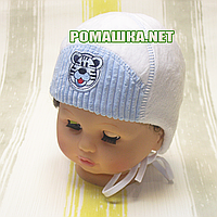 Детская зимняя термо шапочка на завязках р. 38 для новорожденного ТМ Мамина мода 3250 Голубой