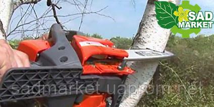 валка небольших деревьев бензопилой