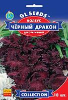 Семена КОЛЕУС ЧЁРНЫЙ ДРАКОН декоративный 10 шт
