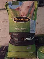 Концентрат  Протан Т Плюс ( для кормления мясных пород свиней весом от 25 кг и до завершения откорма)
