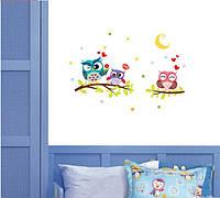 """Наклейка на стену в детскую комнату """"3 совы на ветке"""" 43*63см (лист30*40см)"""