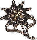 Значок металлический на берет Бундесвера «Эдельвейс» 36047