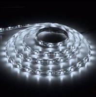 Светодиодная лента 12в в силиконе - Feron LS604 (белый холодный свет)