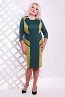 Трикотажное женское платье батал Флора бутылка  Lenida     52-62 размеры