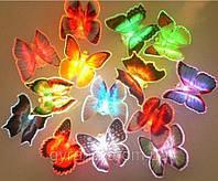 Бабочка светящаяся