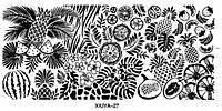 Фото-дизайн 0027 Мелкие цветы