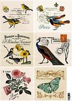 EV-D089 Декупажная карта 29,5х42 «Почтовые марки. Птицы, бабочки, цветы»