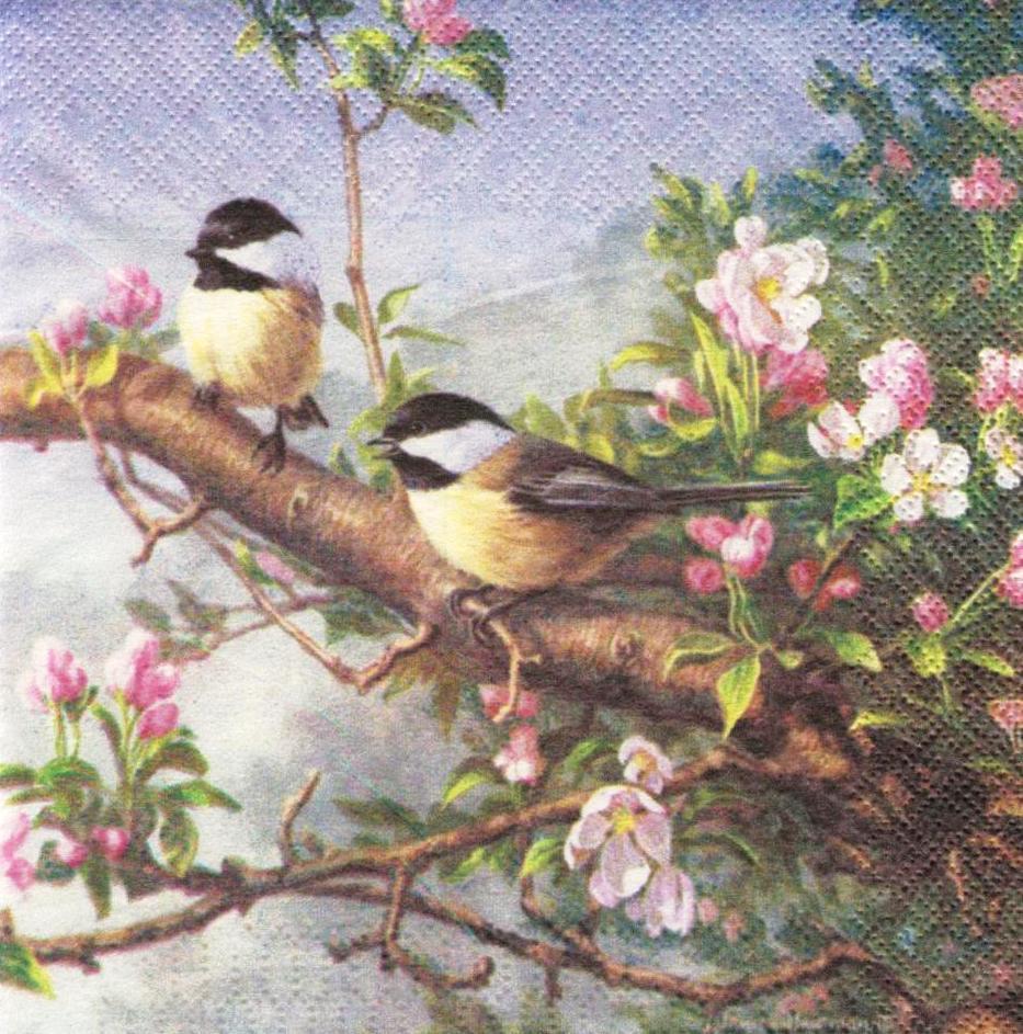 Редкие декупажные салфетки Птицы на цветущей ветке 6406
