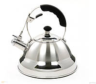 Чайник Maestro 2,6 л (нержавеющая сталь)