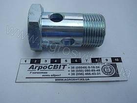 """Болт-штуцер BSP 1"""" х 58 (под 1 наконечник) дюймовый, 1600-00-16"""