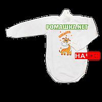Детский боди-гольф р. 80 с начесом ткань ФУТЕР (байка) 100% хлопок ТМ Алекс 3189 Бежевый2
