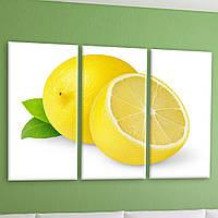 "Модульная картина ""Лимон"""