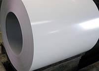 Гладкий лист 9003 цвет 0,45 толщина