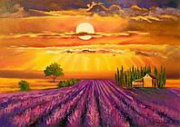 «Закат над лавандовым полем» картина маслом