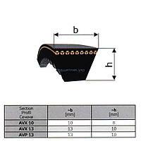 Ремень приводной зубчатый - Z(0)-875зуб. (AVX-10 875) Rubena (Чехия), фото 1