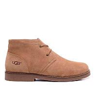 Ботинки мужские Ugg Australia Leighton (угги лейтон) замшевые коричневые, угги мужские