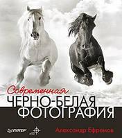 Современная черно-белая фотография. Автор: Александр Ефремов
