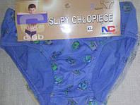 Трусы плавками мальчик хлопок Natural Club набор комплект 3шт.